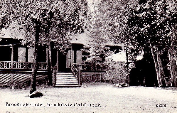 Brookdale Hotel in California CA Vintage Postcard - 0458