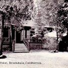 Brookdale Hotel in California CA Vintage Postcard - 0458