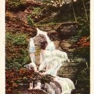 Leatherstocking Fall in Cooperstown New York NY, Curt Teich Postcard - 0586