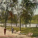 Boston Common Park in Massachusetts MA Vintage Postcard - 0642