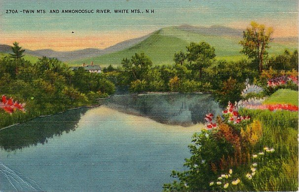 Twin Mountains and Ammonoosuc River at White Mountains, New Hampshire NH Postcard - 0872