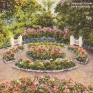 Floral Display House in Shaw's Garden at St. Louis Missouri MO Postcard - 1185