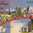 Greetings from Jackson Michigan MI Large Letter Linen Postcard - 1250