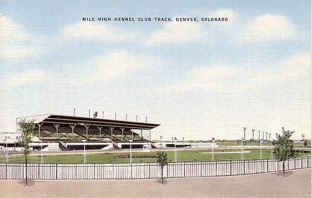 Mile High Kennel Club Track at Denver Colorado CO Linen Postcard - 1291
