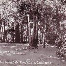 Hotel Brookdale Grounds in California CA Vintage Postcard - 1563