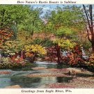 Greetings from Eagle River Wisconsin WI Mid Century Linen Postcard - 1600