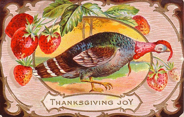 Thanksgiving Turkey Postcard with Winsch Back Vintage Postcard - 1642