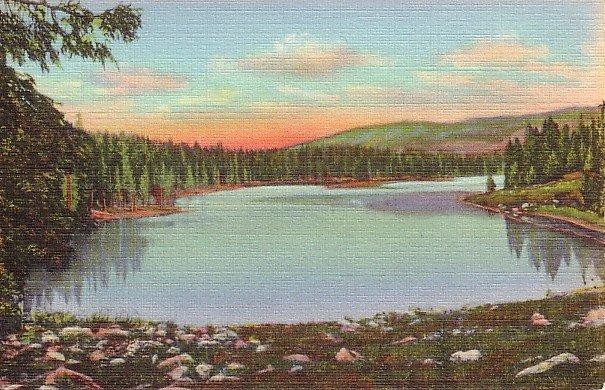 Alexander Lake on Grand Mesa in Colorado CO 1940 Curt Teich Postcard - 1822