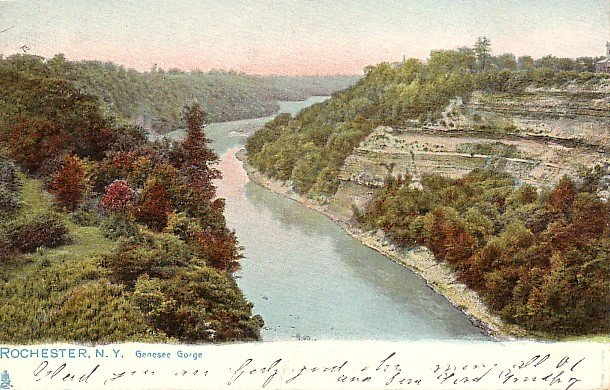 Genesee Gorge in Rochester New York Raphael Tuck & Sons Vintage Postcard - 1850