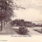 Riverside Park in Toledo Ohio OH Vintage Postcard - 2086