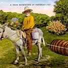 Texas Waterworks of Yesterday Mid Century Linen Postcard - 2329