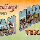 Greetings from Van Horn Texas TX, Large Letter Linen Postcard - 2342