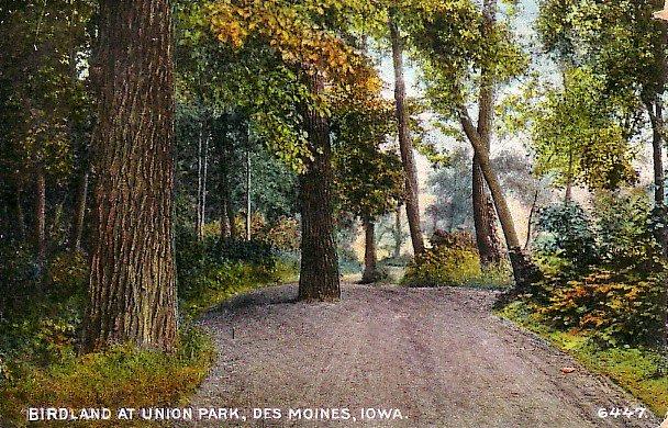 Birdland at Union Park in Des Moines Iowa IA, Vintage Postcard - 2486