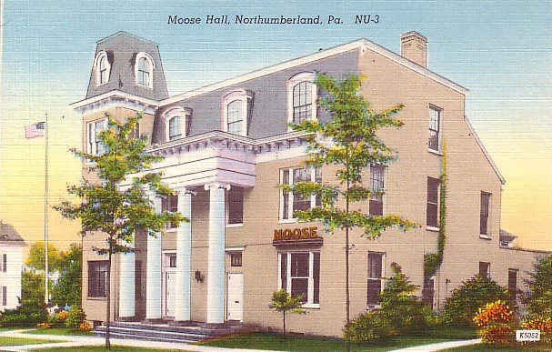 Moose Hall in Northumberland Pennsylvania PA, Linen Postcard - 2551