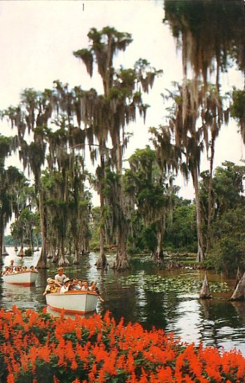 Sightseeing Boats at Florida FL Cypress Gardens Chrome Postcard - 2676