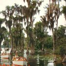 Sightseeing Boats at Florida FL Cypress Gardens Chrome Postcard - 2676