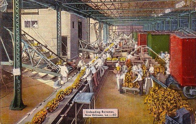 Unloading Bananas in New Orleans Louisiana LA, 1946 Linen Postcard - 2765