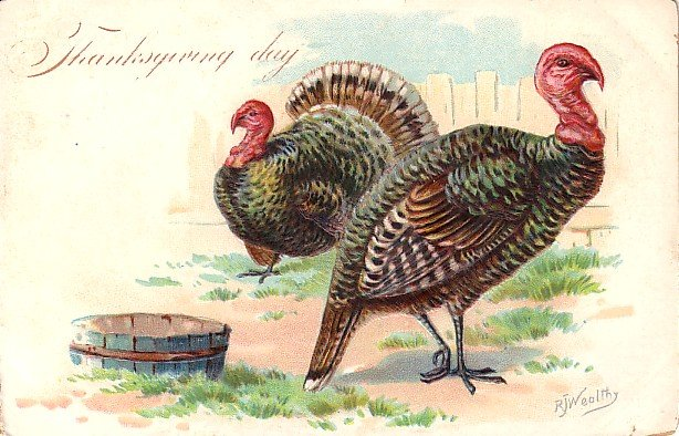 Raphael Tuck and Sons Artist Signed by R J Wealthy Thanksgiving Postcard - 3002