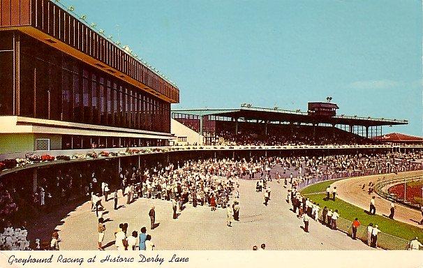 Derby Lane Greyhound Track at St Petersburg Florida FL, 1969 Curt Teich Chrome Postcard - 3017
