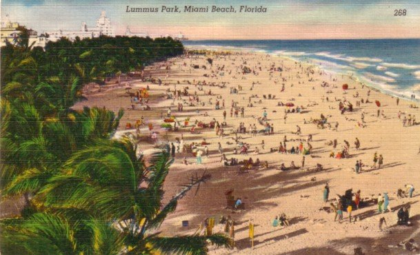 Lummus Park at Miami Beach Florida FL, Mid Century Linen Postcard - 3118