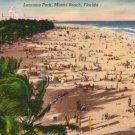 Lummus Park at Miami Beach Florida FL, Mid Century Linen Postcard - 3118