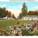 New York State Fish Hatchery in Warrensburgh NY, Curt Teich Vintage Postcard - 3229