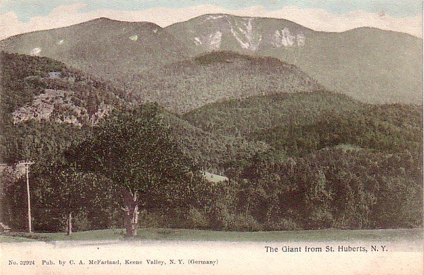 The Giant from St. Huberts New York NY, Vintage Postcard - 3252