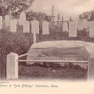 The Grave of Josh Billings at Lanesboro Massachusetts, Vintage Postcard - 3266