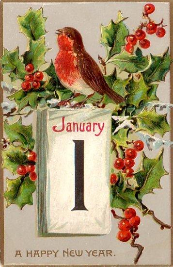 Robin Wishing A Happy New Year, Raphael Tuck & Sons Vintage Postcard - 3283