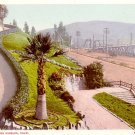 1909 View of Elysian Park in Los Angeles California CA, Detroit Publishing Postcard - 3300