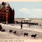A Dog Team in Quebec Canada, Vintage Postcard - 3369