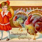 Turkeys Following Little Girl Home, Thanksgiving Vintage Postcard - 3382