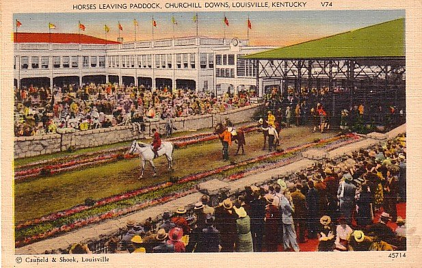 Horses Leaving Paddock at Churchill Downs in Louisville Kentucky KY, Linen Postcard - 3508