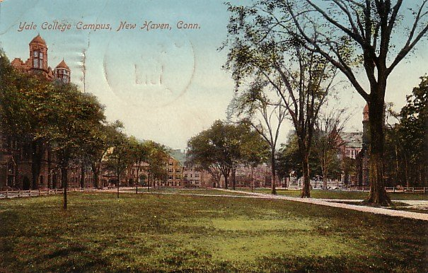 Yale College Campus at New Haven Connecticut CT, 1913 Vintage Postcard - 3625