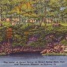 Round Spring State Park near Eminence Missouri MO, Linen Postcard - 3669