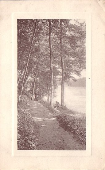 Lake View Landscape 1914 Postcard with Platemarked Type Border - 3677