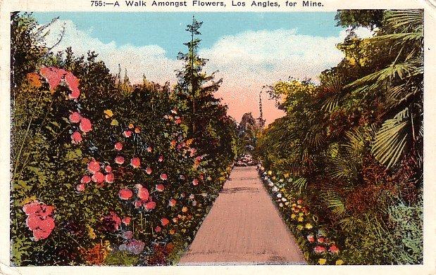 A Walk Amongst Flowers at Los Angeles California CA, 1923 Vintage Postcard - 3784