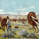 Saddling Up by Gollings, Cowboy and Western 1911 Vintage Postcard - 3895