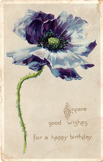Birthday Postcard with Blue Poppy, Raphael Tuck & Sons Vintage Postcard - 4003