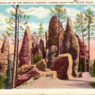 The Pinnacles in Custer State Park at Black Hills, South Dakota SD Postcard - 4014