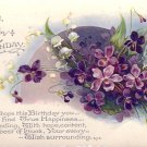 Birthday Violets, Vintage Postcard - 4024