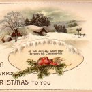 Tranquil Winter Scene with Red Birds, 1914 Christmas Vintage Postcard - 4036