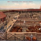 Union Stock Yards in Portland Oregon OR, Edward H Mitchell 1910 Vintage Postcard - M0086