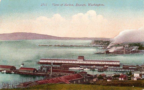 View of Harbor in Everett Washington WA, Edward H Mitchell 1910 Vintage Postcard - M0101