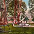 City Park in Chico, California CA Edward H Mitchell 1911 Vintage Postcard - M0122
