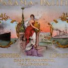 Panama Pacific International Exposition in San Francisco CA, Edward H Mitchell 1915 Postcard - M0125