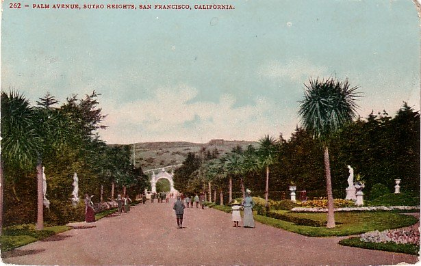 Palm Avenue at Sutro Heights in San Francisco California CA Edward H Mitchell 1907 Postcard - M0153
