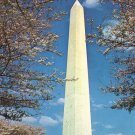 Washington Monument During Cherry Blossom Time in Washington DC, Chrome Postcard - 4076