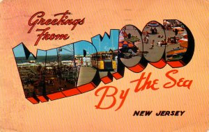 Greetings from Wildwood by the Sea in New Jersey NJ Large Letter Chrome Postcard - 4211