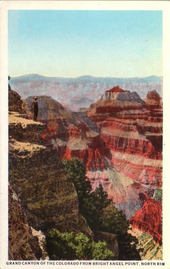Grand Canyon from Bright Angel Point in Arizona AZ, Vintage Postcard - 4338